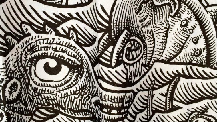sea-monster-curtain