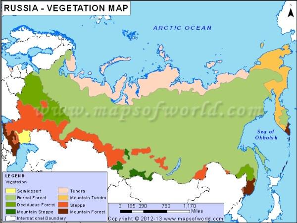 Russia Vegetation Map