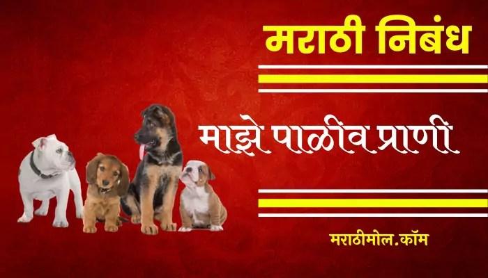 Essay On My Pet Animal In Marathi