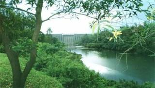 Koyna Sanctuary Information In Marathi