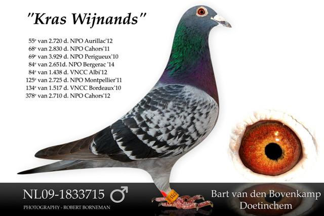 Bart van den Bovenkamp, Doetinchem