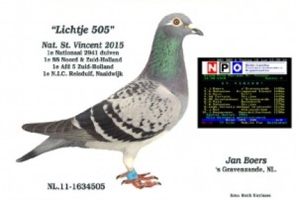 Lichtje 505 Jan Boersedited