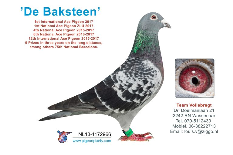 Team Vollebregt verkoopt 'De Baksteen' zondag a.s.