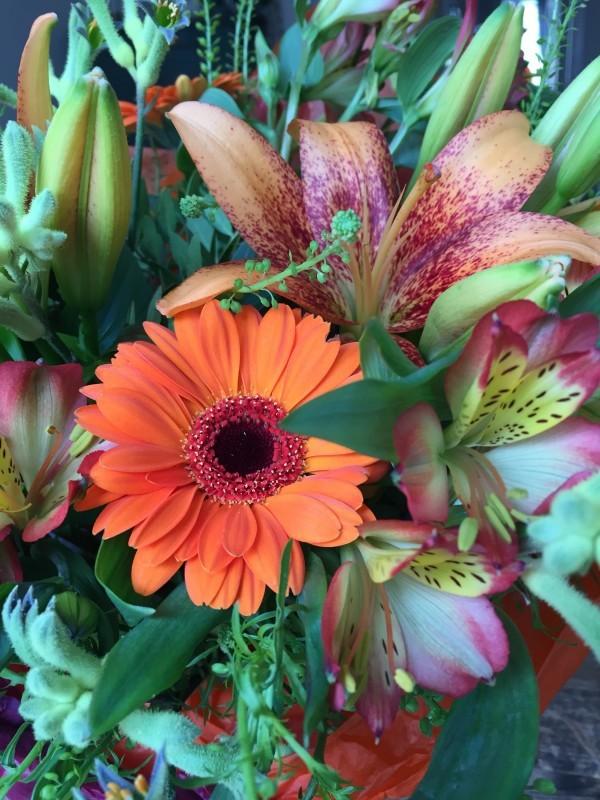 Lika glad för mailet som för Krya-på-dig blommorna från Staffan tidigare. Foto: privat