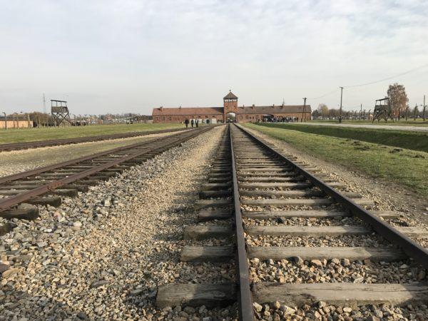 Järnvägspåret genom Dödens port i Birkenau/Auschwitz. En historisk plats med historiens hemskaste förintelse. Foto: privat