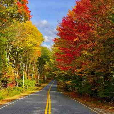 Five Reasons to Love Fall Cycling in Maine