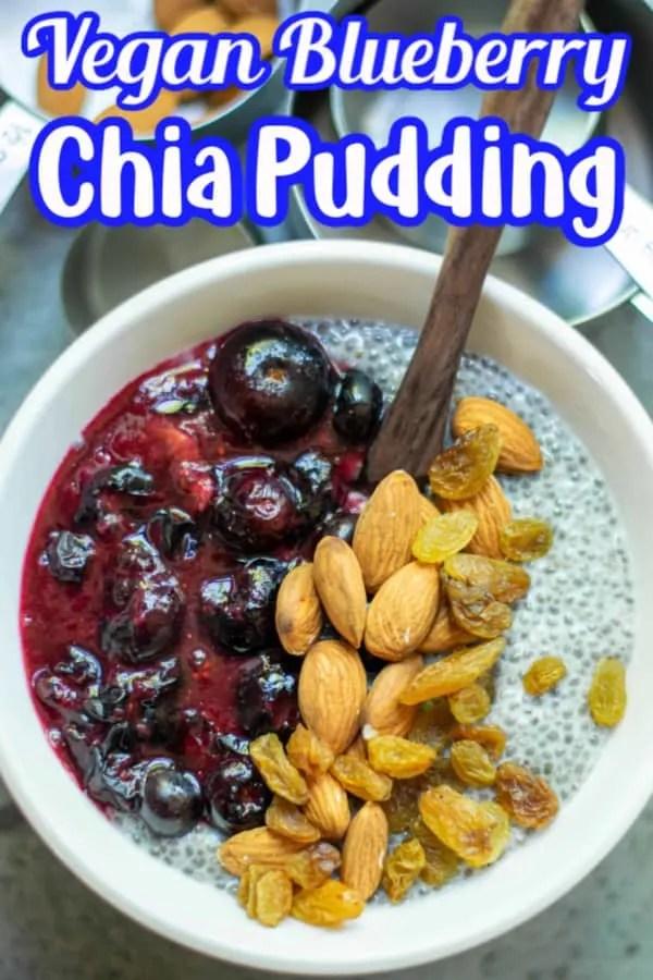 Vegan Blueberry Chia Pudding Pin