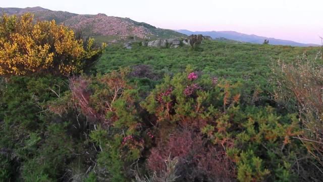 Parque Transfronteiriço do Gerês-Xurés