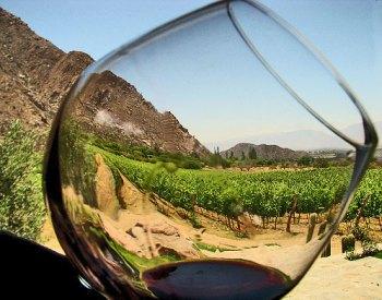 ruta del vino 3