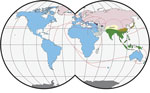 Worldwide distribution of Mus musculus mouse subspecies. Colors indicate subspecies ranges: green and tan, M. musculus castaneus; blue and purple, M. musculus domesticus ; pink, M. musculus musculus ; gray, central populations and M. musculus gentilulus. Note that house mice may not be found throughout the complete extent of hatched areas (e.g., subarctic regions, the Sahara Desert, and the Amazon rainforest). The pink, tan, purple, and gray areas indicate regions of hybridization. Red arrows indicate inferred routes of historical migrations and recent movements in association with humans. Adapted from (7,8). Copyright ©2012 Springer-Verlag. All rights reserved. Adapted with permission from Springer Science and Business Media and Michael Nachman.