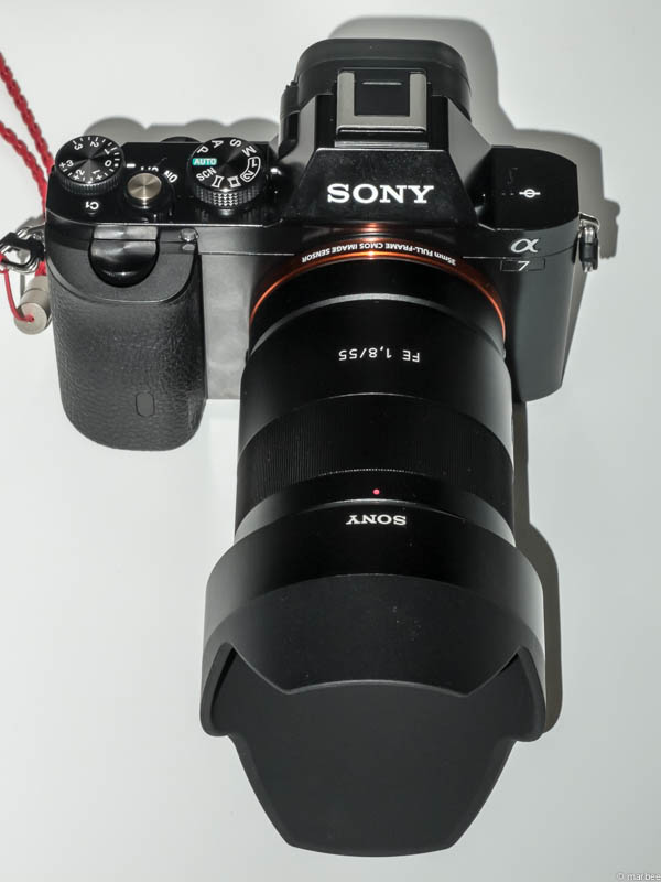 α7 + Sonnar T* FE 55mm F1.8 ZA
