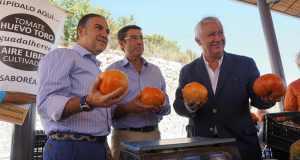 El presidente del PP de Málaga, Elías Bendodo (primero izqda) este domingo en Coín junto al alcalde, Fernando Fernández Tapia y el vicesecretario nacional de Autonomías y Ayuntamientos, Javier Arenas