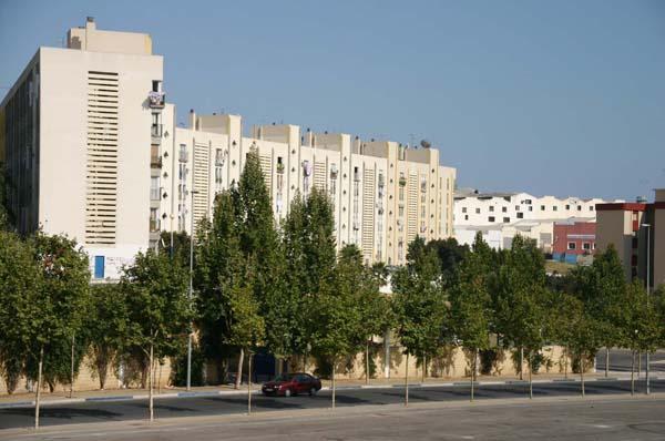 Imagen de las viviendas sociales de la barriada de Las Albarizas en Marbella