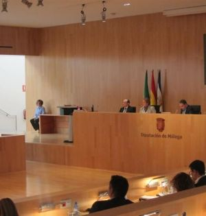 Imagen del pleno celebrado este martes en la Diputación de Málaga. Foto/ Europa Press