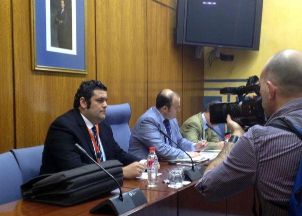 Carlos Cañavate, asesor jurídico del alcalde de Marbella, este martes durante su comparecencia en la Comisión de Investigación de los Cursos de Formación. Foto/ Europa Press