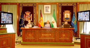 Imagen del salón de plenos de Marbella durante la sesión telemática celebrada durante el estado de alarma. FOTO/ Ayto de Marbella