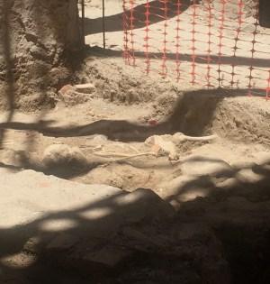 Imagen de los restos humanos hallados en las obras de rehabilitación del edificio de La Fonda en Marbella. FOTO/ CABANILLAS.-Marbella Confidencial