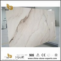 Palissandro Classico White Marble For Home Flooring Tile ...