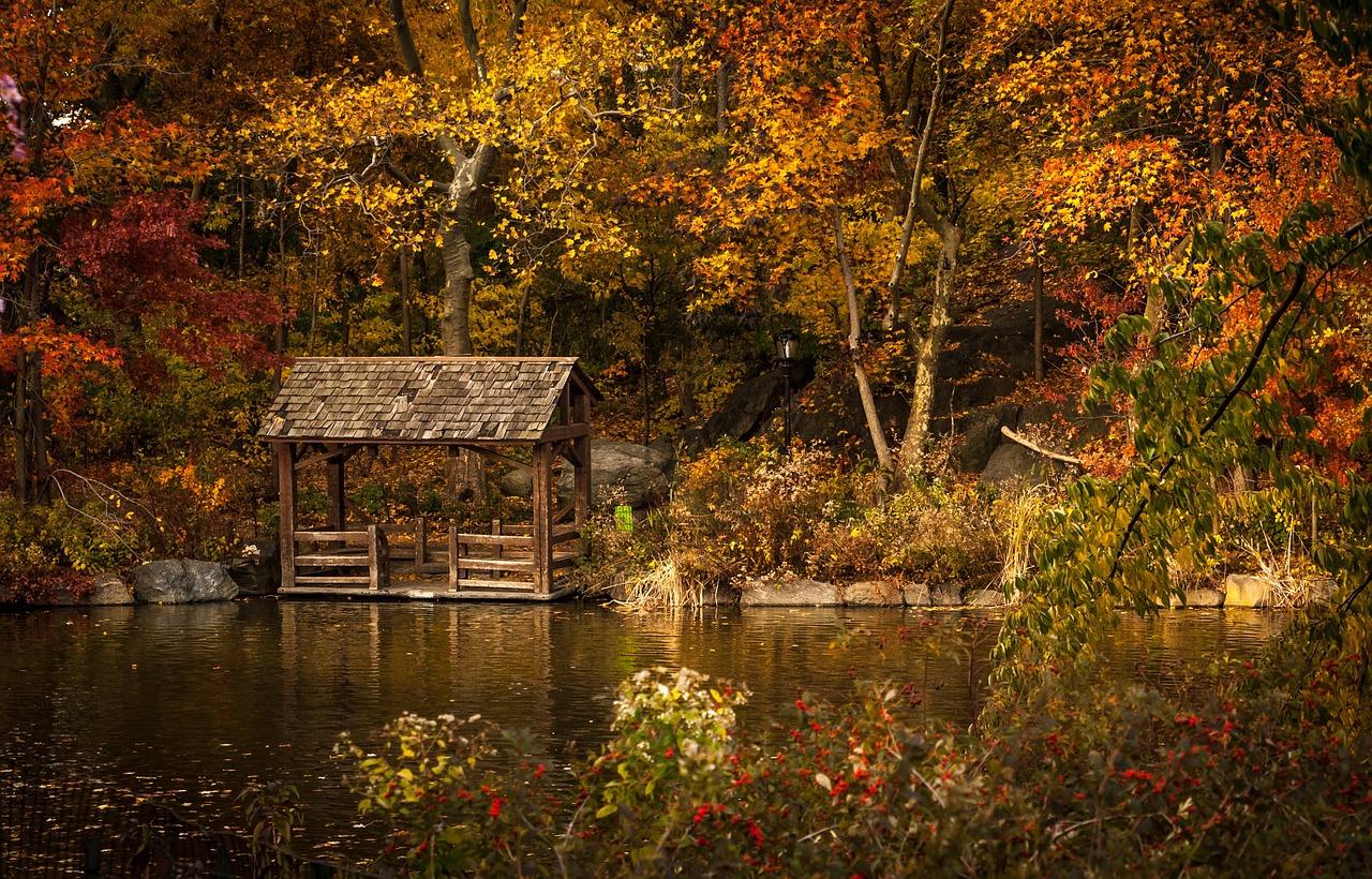 Michigan Fall Colors Wallpaper Gros Morne Newfoundland An Autumn Wonderland Marble