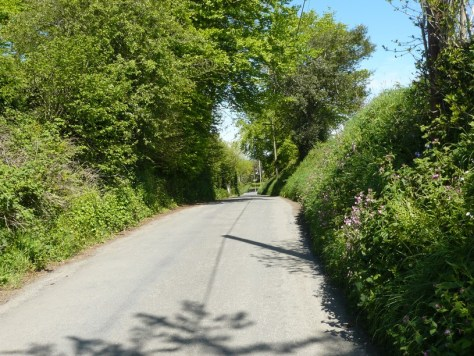 Alswear Old Road Towards South Molton
