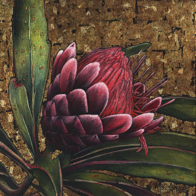 Protea #1, Oil and Silver Leaf on Canvas, 30cm by 30cm, (2011)