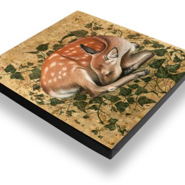 Sleeping Fawn – Archival Canvas Print Stretched