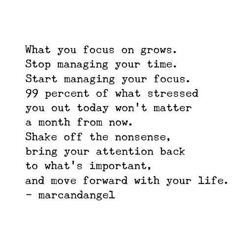 citação 4