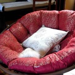 Papasan Chair Stool Cushions Hunting Swivel Tips Chic Cushion For Accessories Ideas Pier One