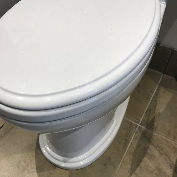 Toto Wall Hung Toilet With Bidet. Fantastic Wall Hung