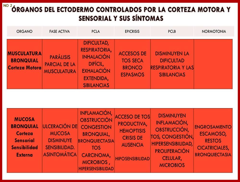 ORGANOS Y SUS SINTOMAS 2