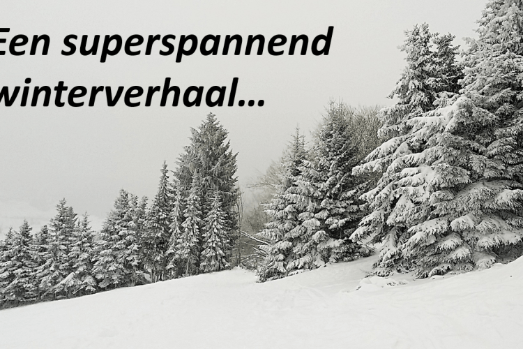Een superspannend winterverhaal