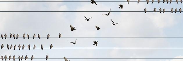 Familias en transición–2: Siete Estrategias para enfrentar el cambio