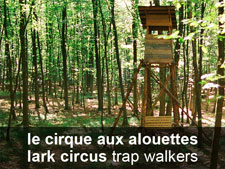 le cirque aux alouettes