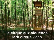 le cirque aux alouettes (vidéo)