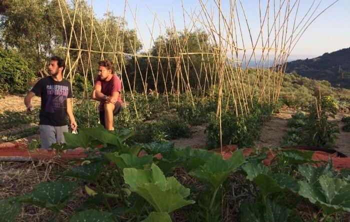 marchiodoc_agricoltura-giovani