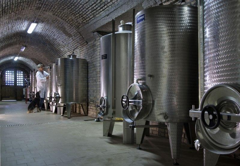 """Crisi vitivinicola, """"le istanze della Capitanata al Ministero dell'Agricoltura"""""""