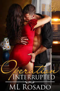 Operation Interrupted by ML Rosado, erotic romantic suspense