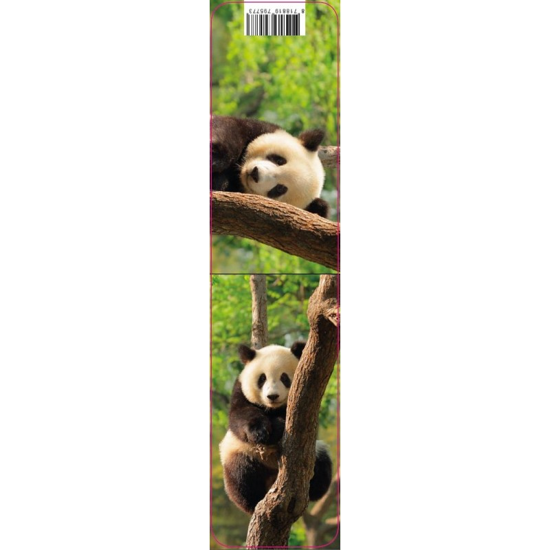 Marque Page Magntique Panda  MarcoEagle