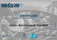 Certificate fotografija