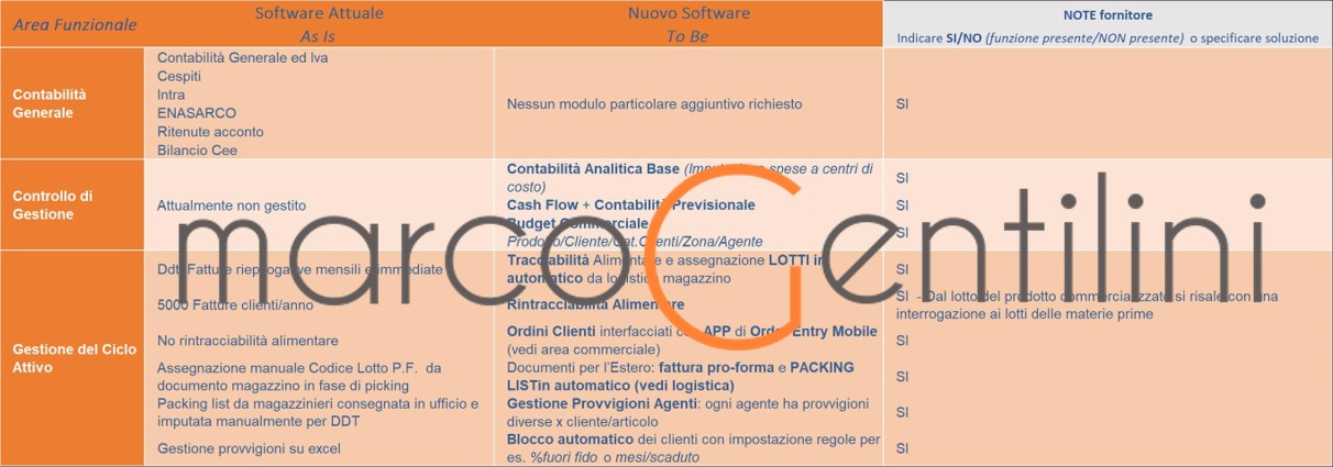 modello-excel-software-selection-as-is-to-be