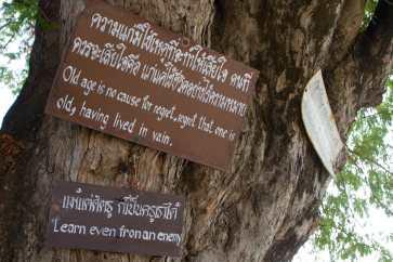 Thailandia & Laos 065