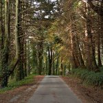 peninha road