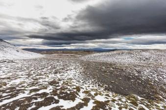 「tundra」的圖片搜尋結果