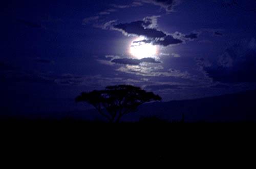 https://i0.wp.com/www.marcosanti.it/Reportage/Africa_ph/Tanzania/Tanzania_notte_g.jpg