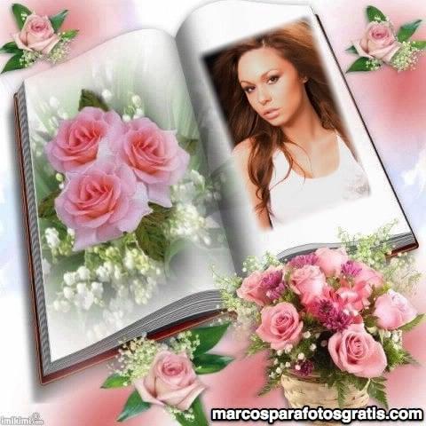 marcos de fotos de libro abierto y rosas