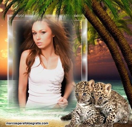 marcos de fotos de cachorro de leopardos