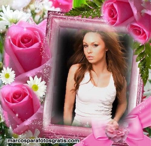 marcos de fotos con flores rosas