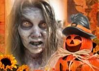 Marco de calabazas de Halloween