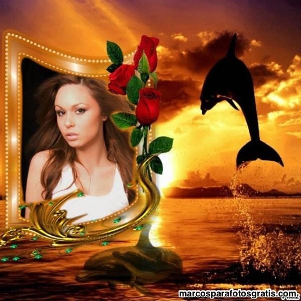 marco con rosas y delfines