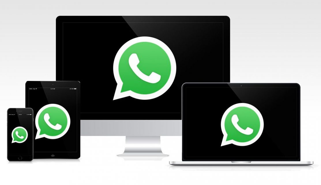 WhatsApp multidispositivo, novedades